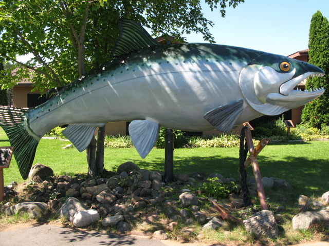 worlds biggest fish